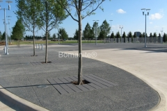 Texas Bomanite Exposed Aggregate Systems with Bomanite Sandscape Texture decorative concrete at the Dallas Cowboy Stadium.