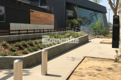 Bomel Construction utilized Bomanite Sandscape Texture decorative concrete to create the pedestrian entrances and walkways around the LAFC Banc of California Stadium, adding a durable hardscape with consistent texture that blends beautifully with the existing landscape.
